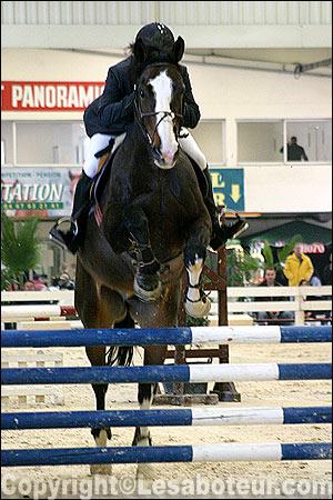 Photos de cso salon de montpellier epreuve du jeudi 11 novembre am4 - Salon du cheval montpellier ...