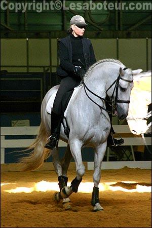 Chevaux iberiques salon du cheval de montpellier 2004 - Salon du cheval montpellier ...