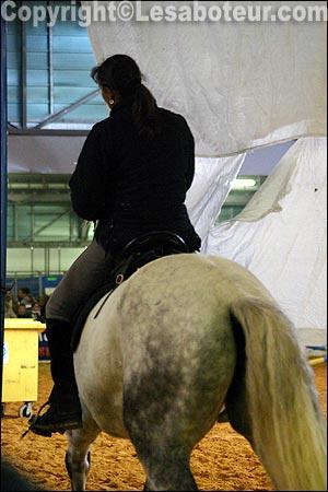 Concours de qualification loisirs salon du cheval de montpellier - Salon du cheval montpellier ...